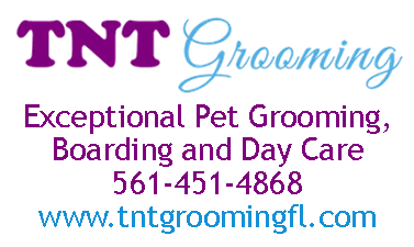 TNT Grooming